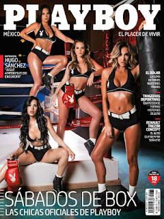 Revista Playboy Mexico - Enero 2017 PDF Digital