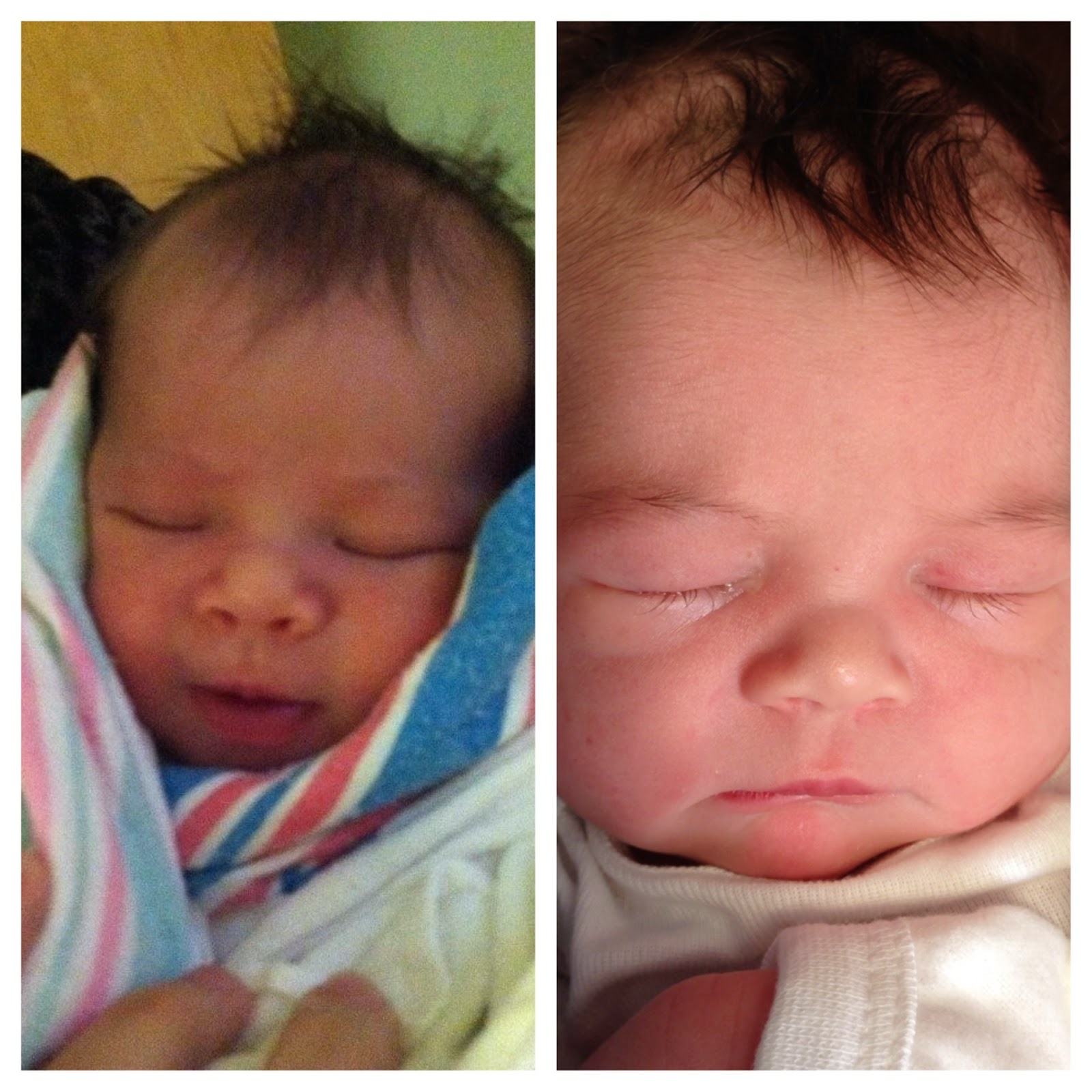 Baby Tess Comparison Photos