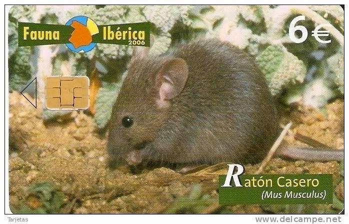 Tarjeta telefónica Ratón casero (Mus musculus)