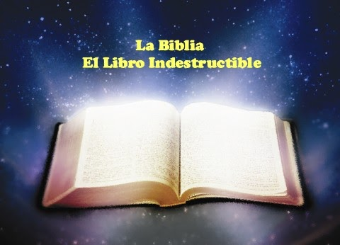 Curiosidades Biblicas: Libros Apócrifos