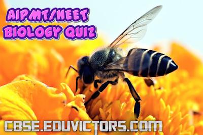 AIPMT/NEET - Biology Quiz (#neetbiomcqs)(#eduvictors)