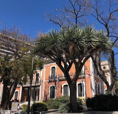 drago en Huelva