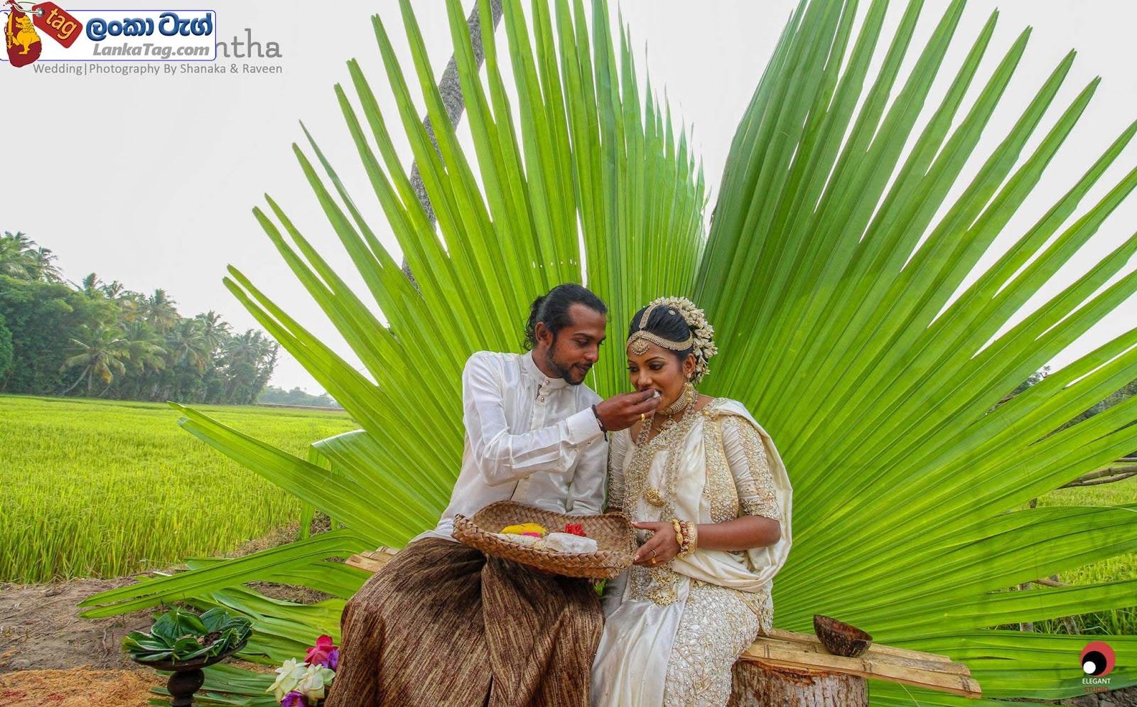 sri lankan wedding dress  37