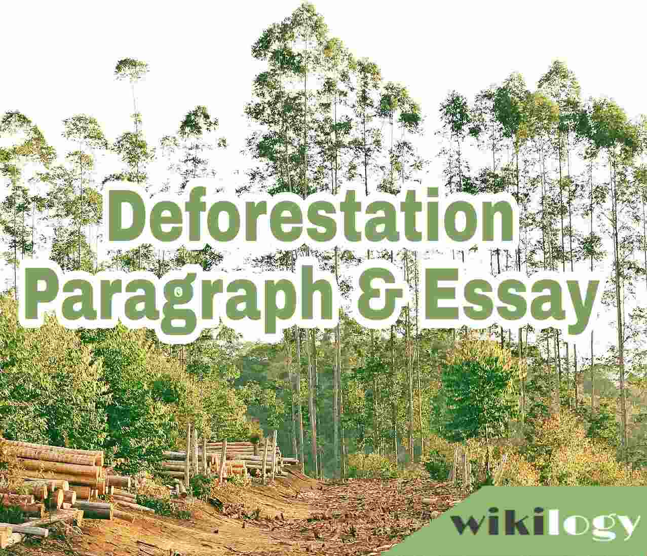 Deforestation Paragraph