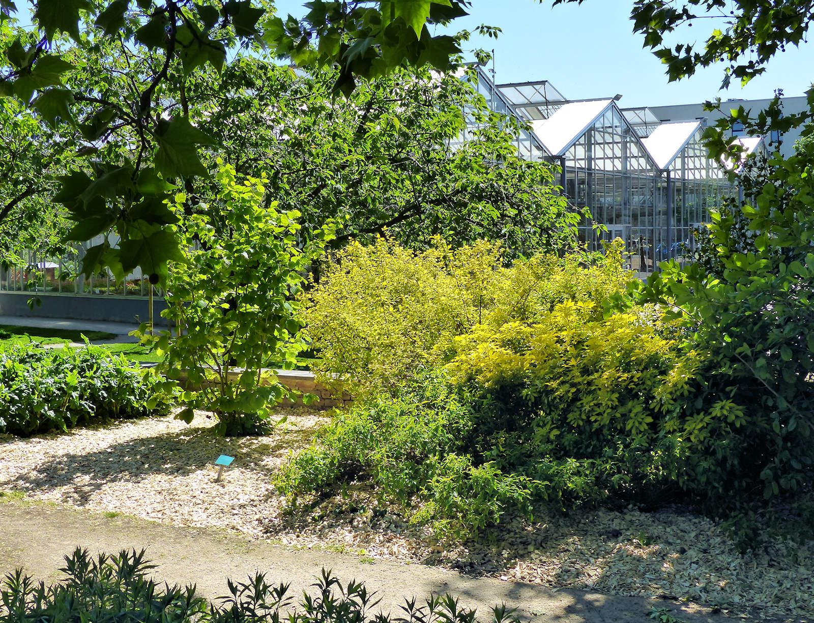 Serres - Jardin botanique, Tourcoing