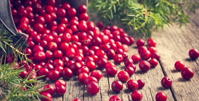 Aneka Manfaat Buah Cranberry untuk Kesehatan