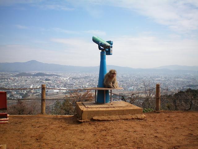 Parque de monos Iwatayama en Kioto