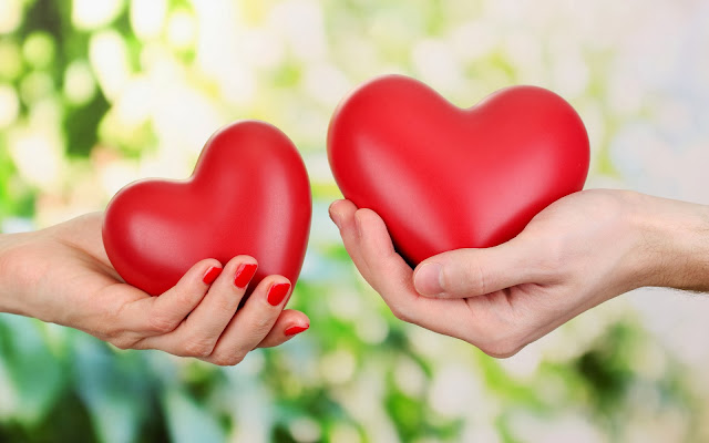 Twee rode liefdes harten in handen