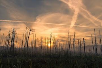 Aquecimento global é uma geoengenharia global artificialmente criada para manipulação do clima