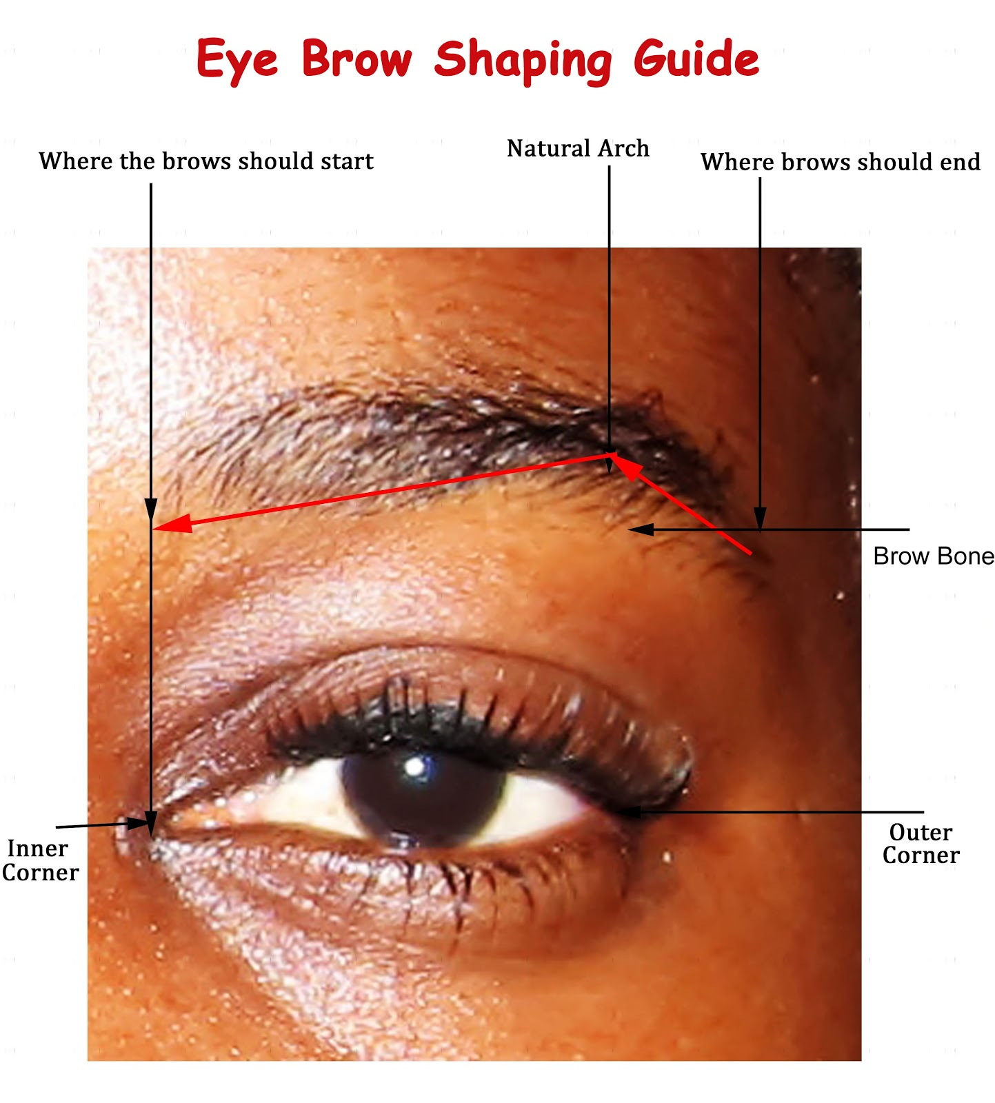 Reddin's Beauty: Eyebrows 101: How To Get The Perfect ...