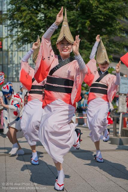 高円寺パル商店街、いろは連の阿波踊りの写真 3