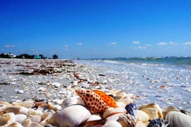 Tempat Wisata Pantai di Lampung Timur yang Sangat Menarik