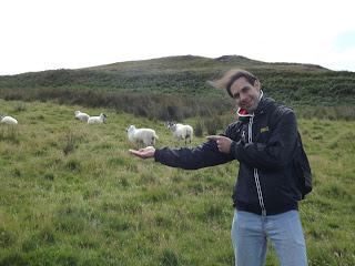 Gabi a bárányokkal