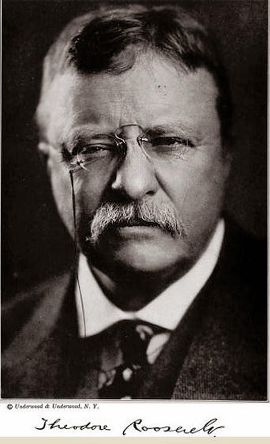 Roosevelt, Teddy