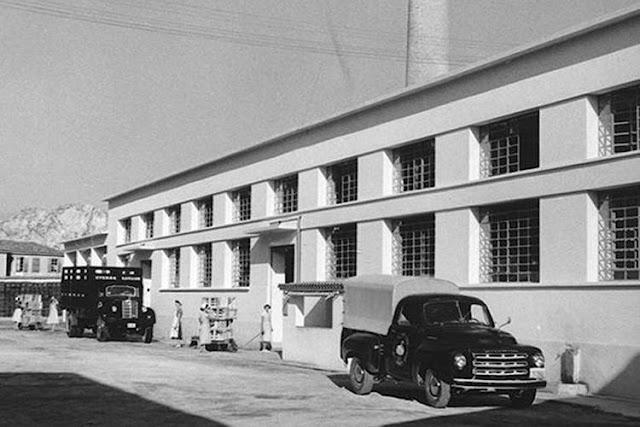 ΚΥΚΝΟΣ: Το εργοστάσιο που γνώρισε στους Έλληνες τον ντοματοπελτέ
