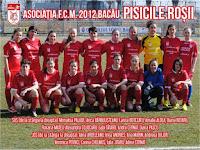 FC Magura 2012 Bacau - Pisicile Rosii