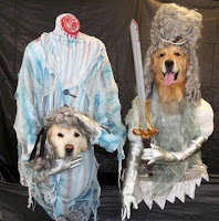 Ghost pet costumes