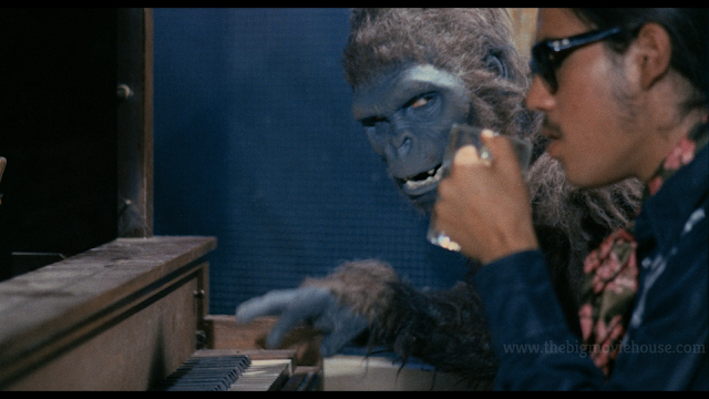 ape and blind musician play the piano together