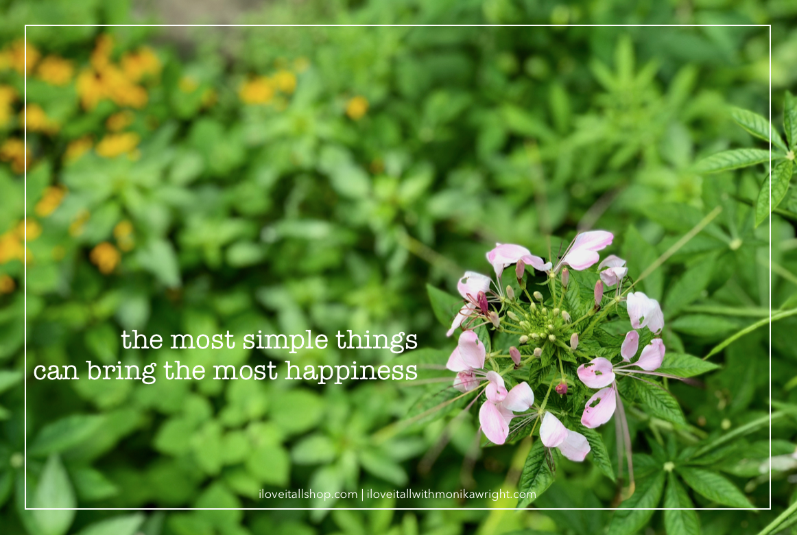 #simple things #happiness #sunday photos #nature #feel good #simple