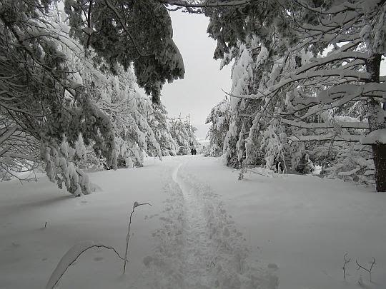 Zimowy pejzaż na Polańskiej.