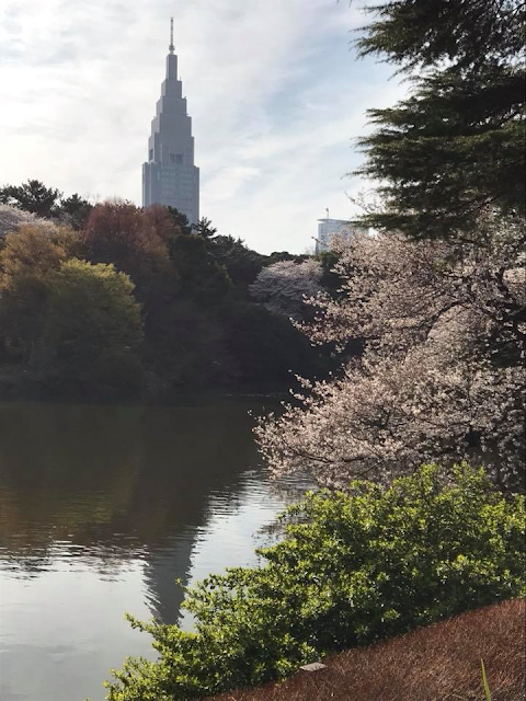 NTT Building from Shinjuku Gyoen