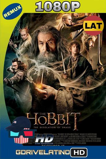 El Hobbit La Desolación De Smaug 2013 EXTENDED BDRemux 1080p Lat-Cas-Ing mkv