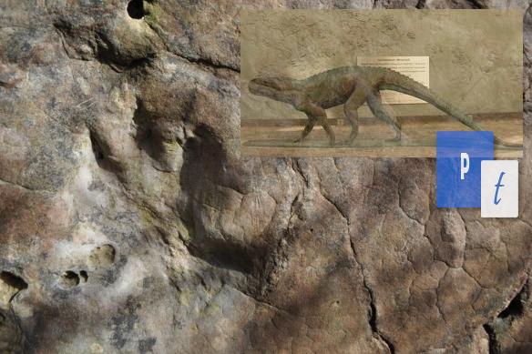Penemuan Tapak Dinosaurus Terbaru