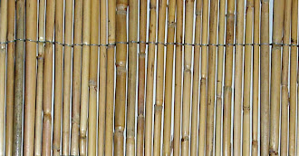 Yan yana dizilmiş ve tellerle tutturulmuş kamış çubuklar