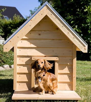 Byg selv isoleret hundehus – Skrivebord til højseng