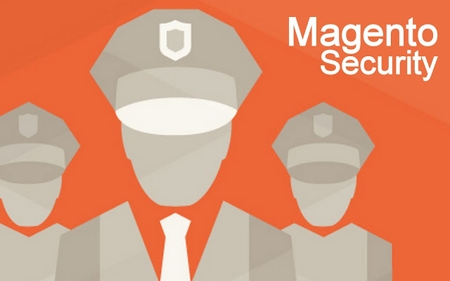 IT | Need of Security for an E-commerce Store on Magento Platform