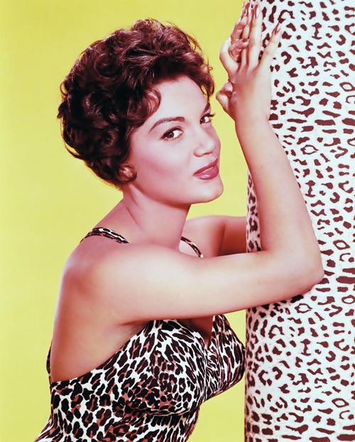 Lyrics de Connie Francis