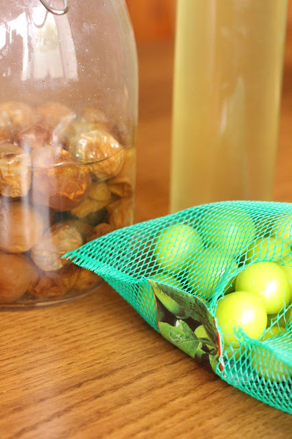 recette alcool aux prunes vertes maesilju