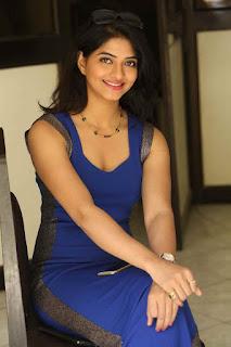 Actress Kashmira Kulkarni Stills in Blue Long Dress at Drishya Kavyam Press Meet  0017.JPG