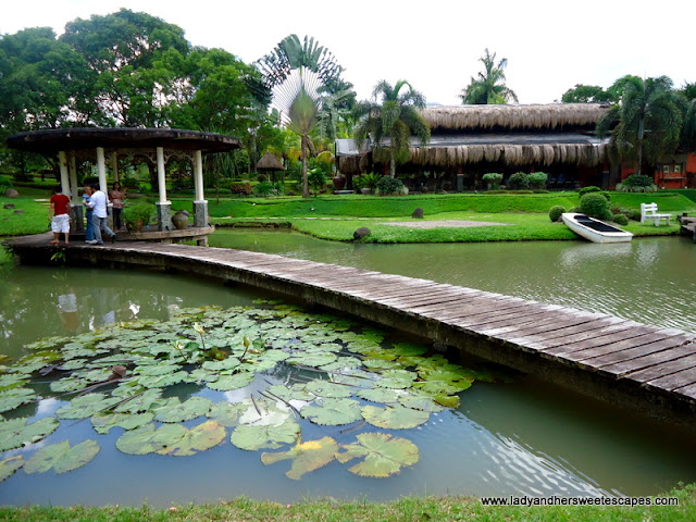 beautiful scenery at Rafael's Farm Leyte