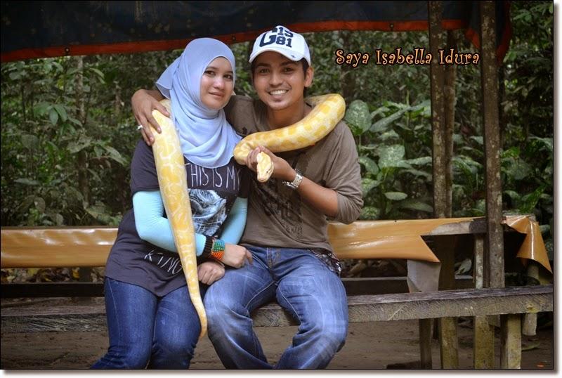 ular kuning, ular takut