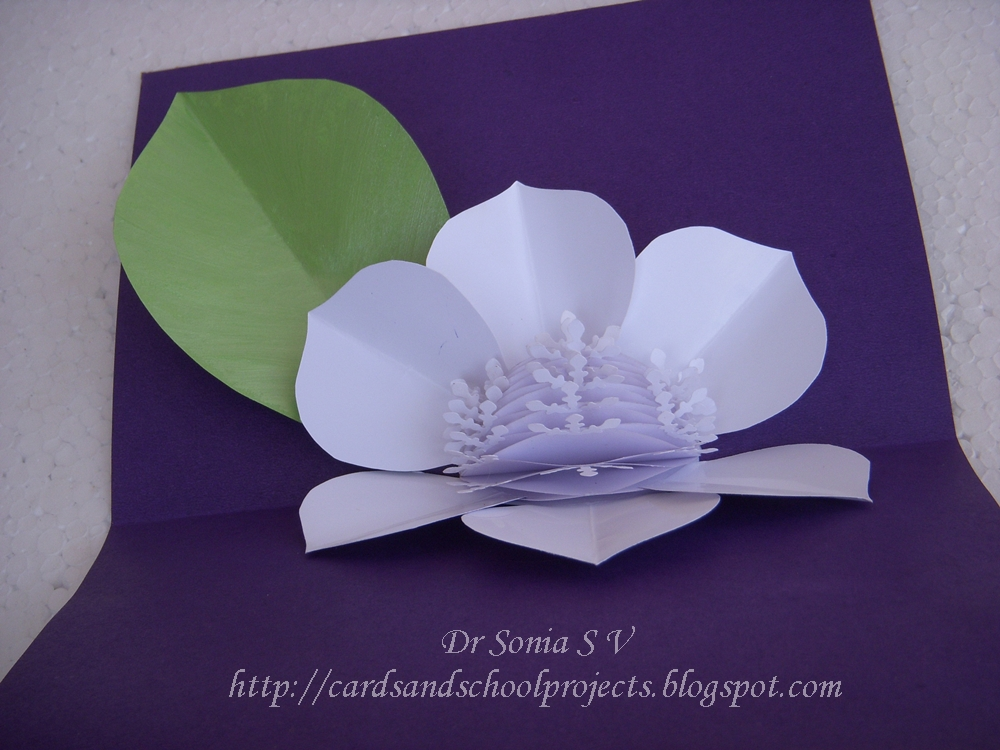 honey comb flower pop up card tutorial