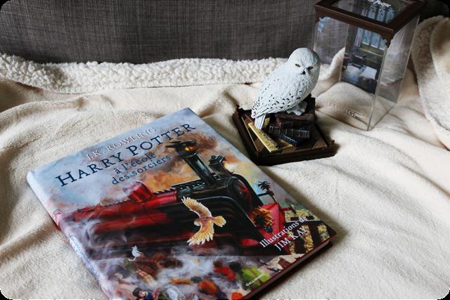 Chroniques D Une Devoreuse De Cookies Harry Potter