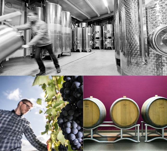 Wein- und Sektgut Bamberger an der Nahe in Meddersheim