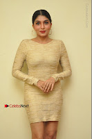 Actress Pooja Roshan Stills in Golden Short Dress at Box Movie Audio Launch  0145.JPG