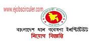 Bangladesh Rice Research Institute Offer Job circular