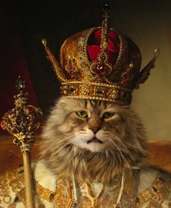 CatRoyaltyKing