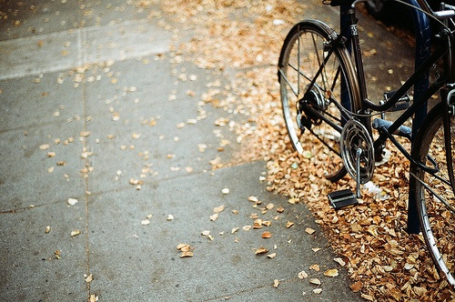 fall_inspiration_bike