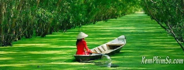Bình Minh Châu Thổ