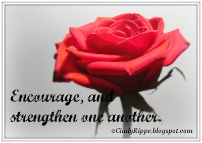 Single Red Rose, Deborah Day quote, Luke 6:31, friendships, support, connections, Florals-Family-Faith, Cindy Rippe