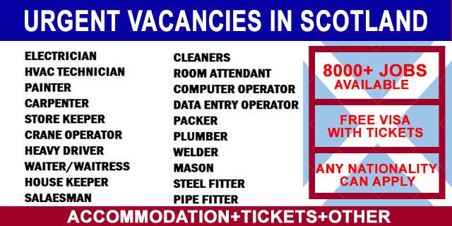 companies vacancies - Hizir kaptanband co