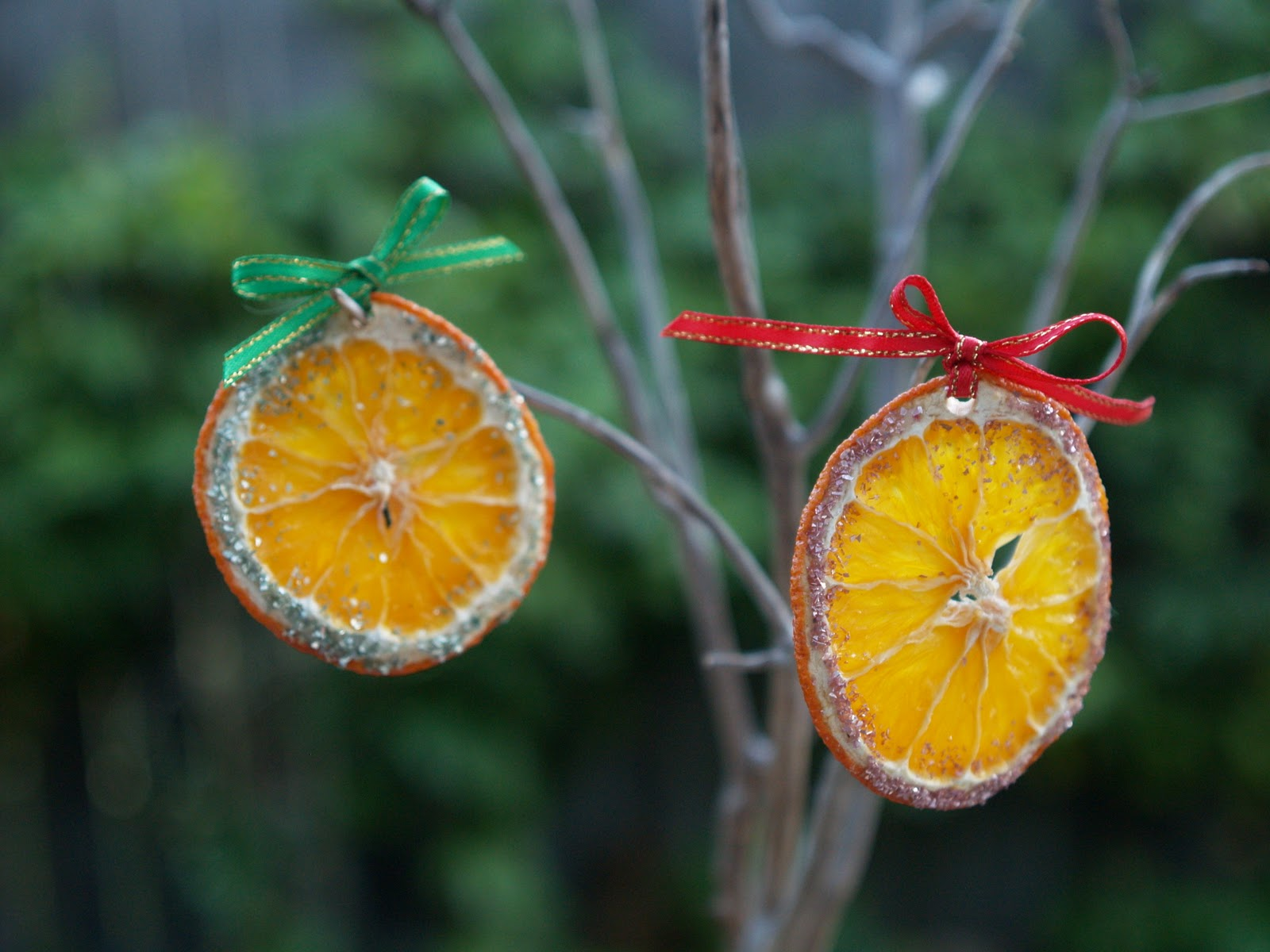 Handmade Christmas Ornaments Dried Oranges The Magic Onions