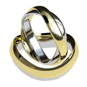 1400a28b45a8 Eternity  Argollas de matrimonio en dos oros