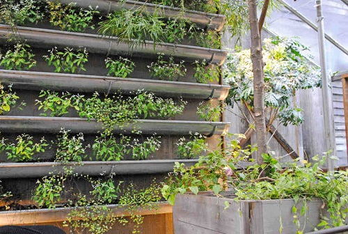 si vous navez pas assez de place dans votre terrain pour vos plantes ou vos herbes aromatiques vous pouvez crer un jardin vertical en fixant des - Comment Faire Un Jardin Vertical