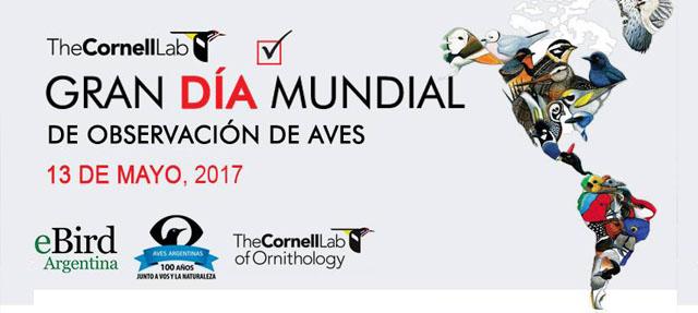 Dia mundial de observacional de aves - Peninsula Valdes