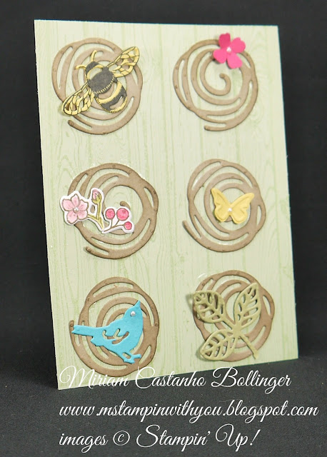 Miriam Castanho-Bollinger, #mstampinwithyou, stampin up, demonstrator, dsc, all occasions card, best birds stamp set, hardwood background stamp, big shot, swirly scribbles thinlits, birds & blooms thinlits, flourish thinlits, detailed dragonfly thinlits, beautiful wings, itty bitty shapes punch, su